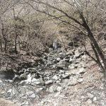中津川上流